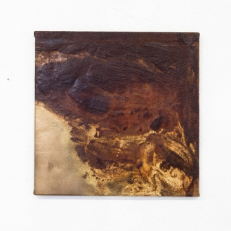 Untitled, rust, gold, 50 x 50cm, 2013