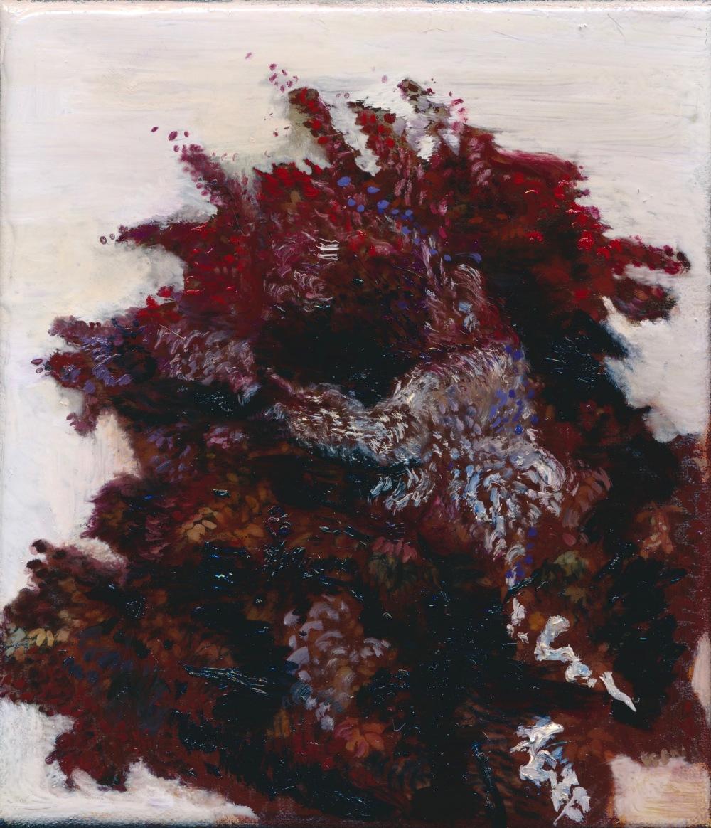 Anita's tree